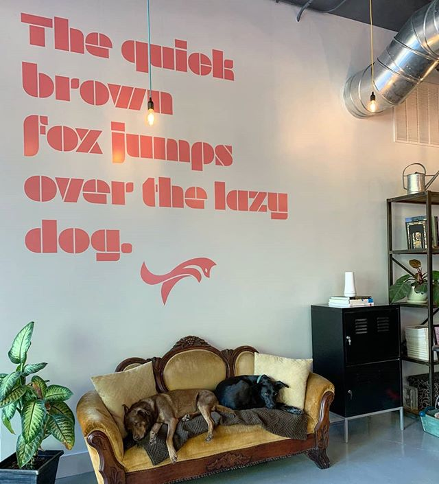 New wall type up today. The dogs performed right on cue . . . . . .